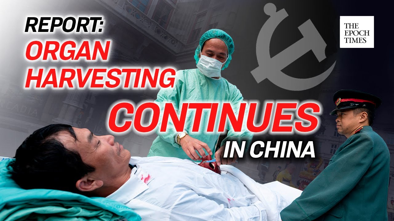 us-religious-report-the-ccp-continues-to-perform-live-organ-harvesting-on-a-large-scale-epoch-news