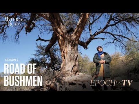 the-road-of-bushmen